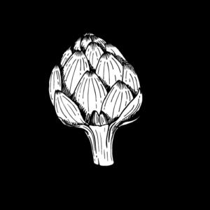 artichoke new