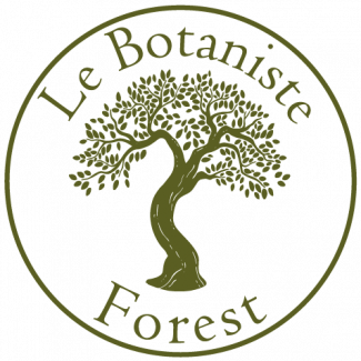 LB forest icon 07